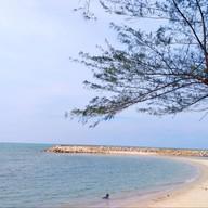 หาดนราทัศน์