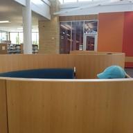 บรรยากาศ Maple Grove Library