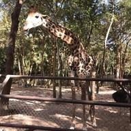 อุทยานสัตว์ป่าอุบลราชธานี