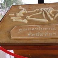 บรรยากาศ พิพิธภัณฑ์เมืองอุดรธานี