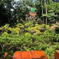 ตำนานป่า