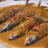 ปลาทูเรสเตอรอง