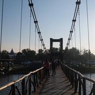 สะพานชมกวาง หนองใหญ่ ชุมพร