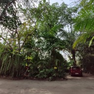 บรรยากาศ Thong-U-Rai