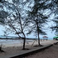 ชายหาดพลา