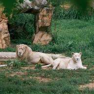 บรรยากาศ สวนสัตว์ขอนแก่น