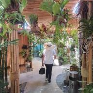 บรรยากาศ Monkey Tree Garden Monkey Tree Garden