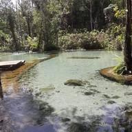 ป่าต้นน้ำบ้านน้ำราด