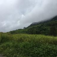 ภูป่าเปาะ