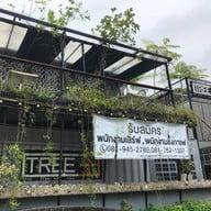 Tree 33