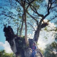 ศูนย์ศึกษาธรรมชาติและท่องเที่ยวเชิงนิเวศเจ็ดคด-โป่งก้อนเส้า