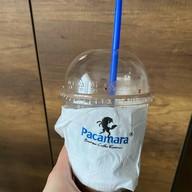 Pacamara Coffee หอสมุดคณะแพทยศาสตร์ จุฬาลงกรณ์มหาวิทยาลัย