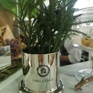 Organika House พิมาน 49