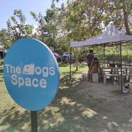บ้านถั่วเย็น Baantuayen x The Dogs Space