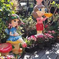 Jazz Garden X KetoHouse Chiangmai เชียงใหม่