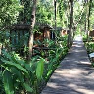 Jungle Kohkood Resort
