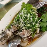 เมนูของร้าน Ah Yat Abalone (阿一鮑魚) โรงแรมรามาดาพลาซ่าแม่น้ำริเวอร์ไซด์