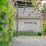 Herbalista Wellness Cafe x City Forest จรัญสนิทวงศ์ 91 แยก 4