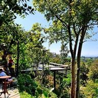 บรรยากาศ View Doi Coffee Home