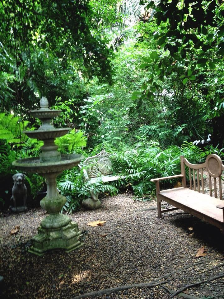 Little Tree Garden