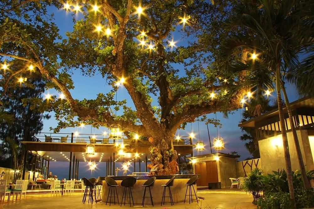Tree@Sea