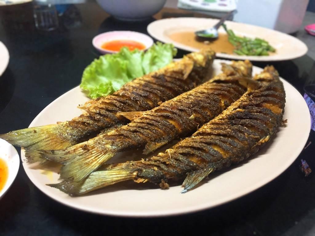 ปลากระบอกทอดขมิ้น อร่อยมากๆ กรอบนอกนุ่มใน  ไข่ปลาเต็มท้อง การันตีว่าอร่อย