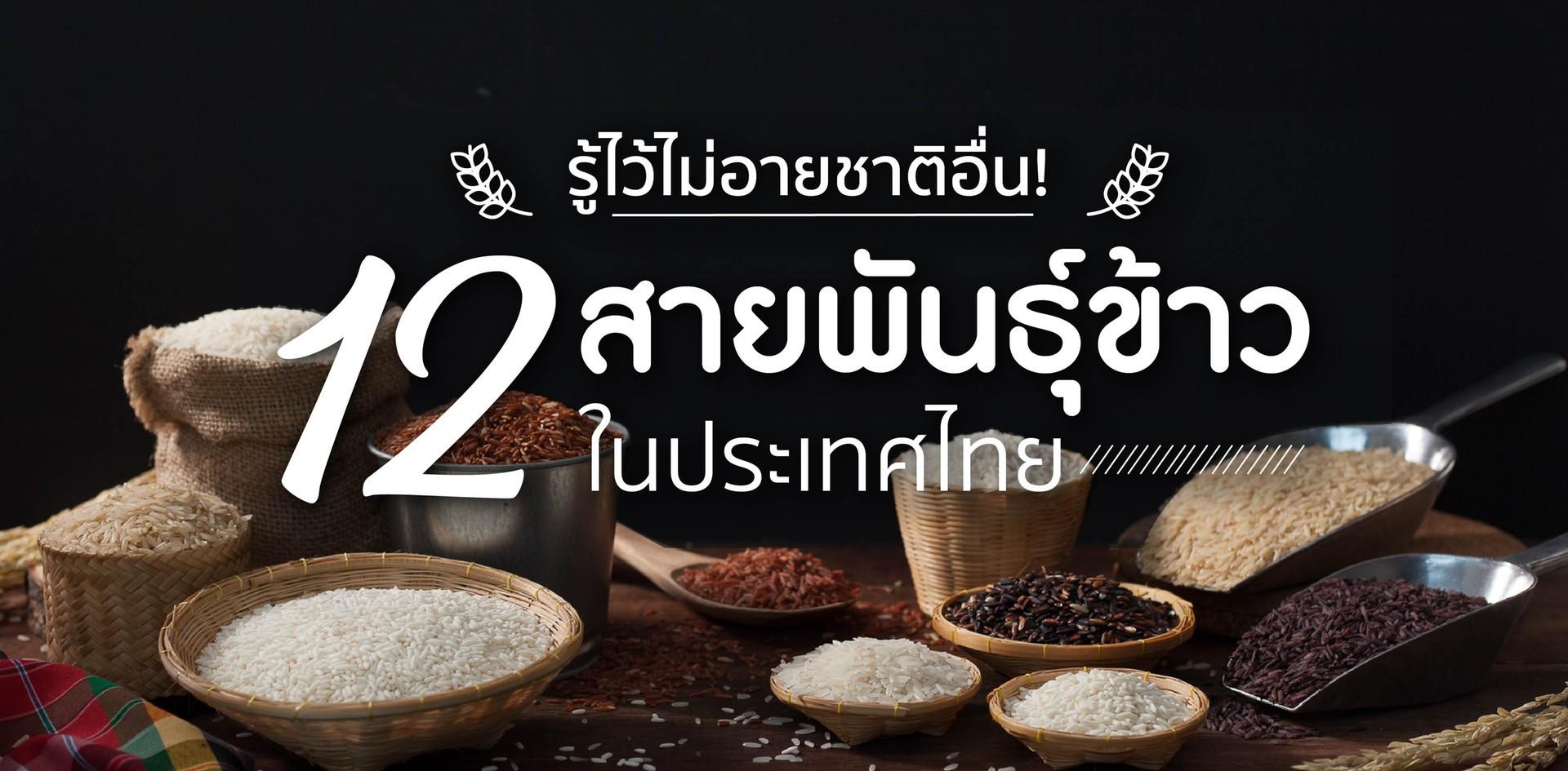 12 สายพันธุ์ข้าวและประเภทของข้าวในประเทศไทย