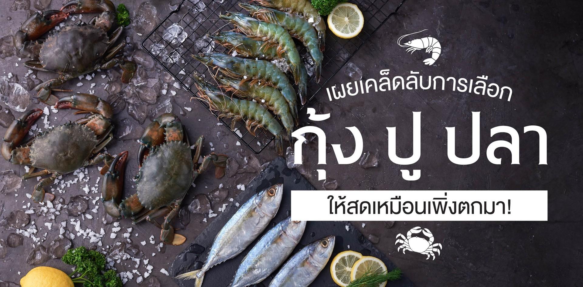 วิธีเช็คความสดอาหารทะเล ให้สดเหมือนเพิ่งตกมา!