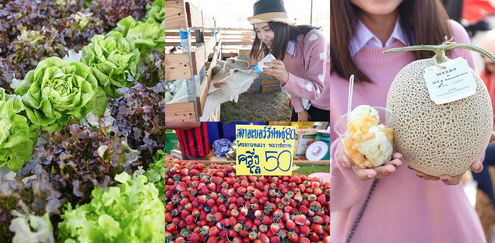 เที่ยวงานเกษตรสุรนารี 2561 งานนวัตกรรมเกษตรและอาหารที่ใหญ่สุดในอีสาน!
