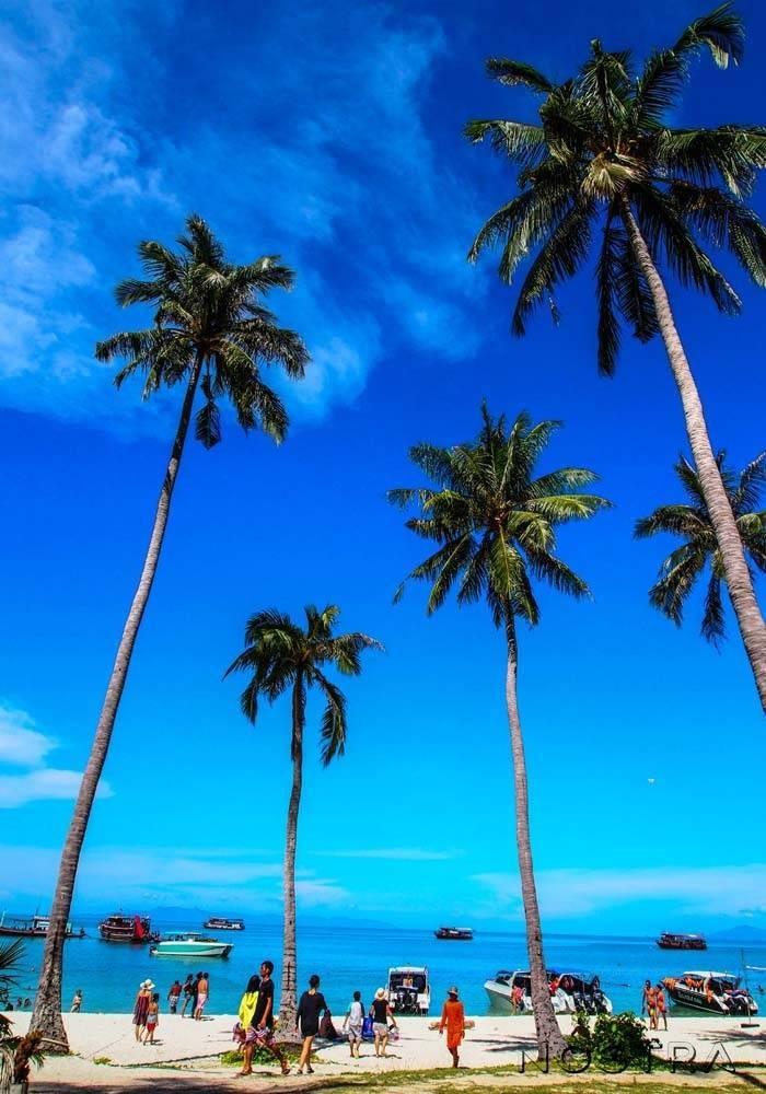 อุทยานแห่งชาติธารเสด็จ-เกาะพงัน