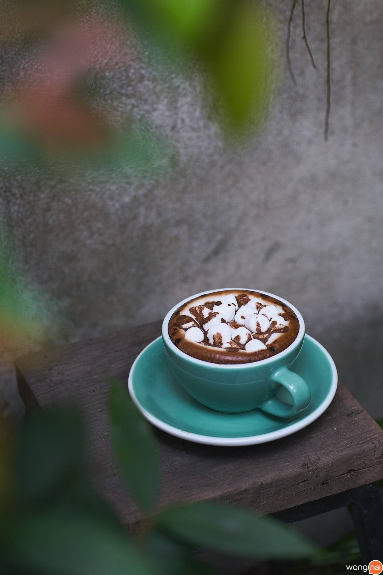 Cafe Trifecta