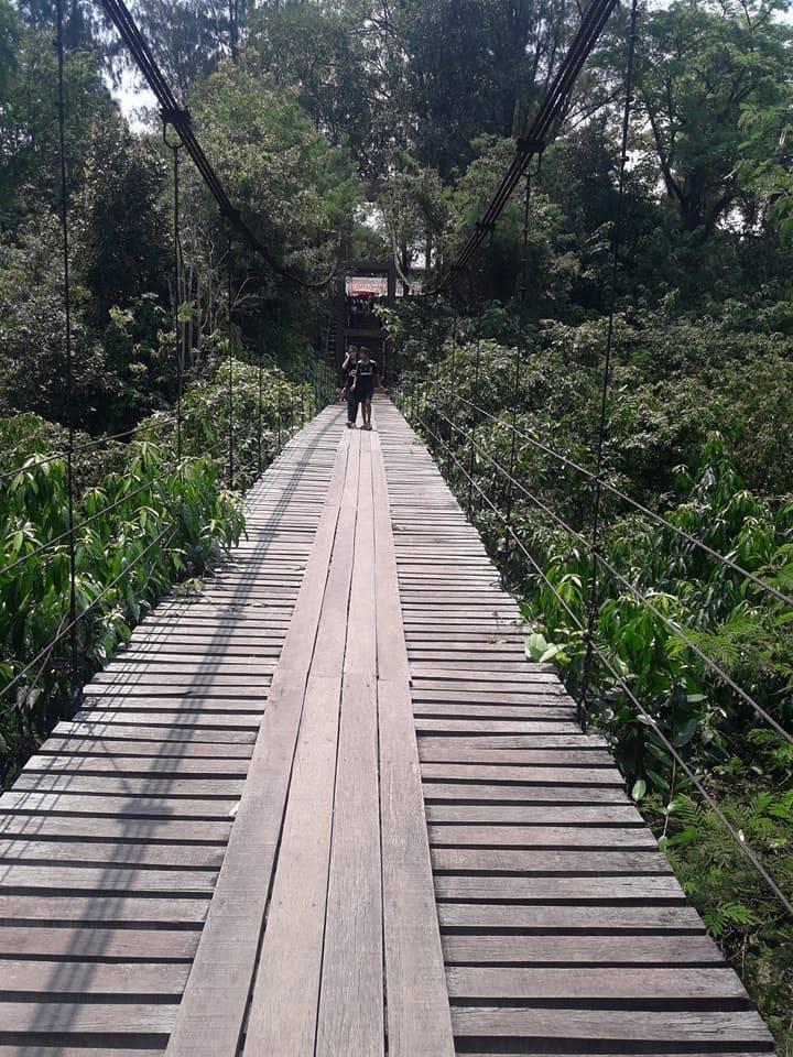 รูปภาพจาก FB จ้าวชายเต่า เมาโสตาย