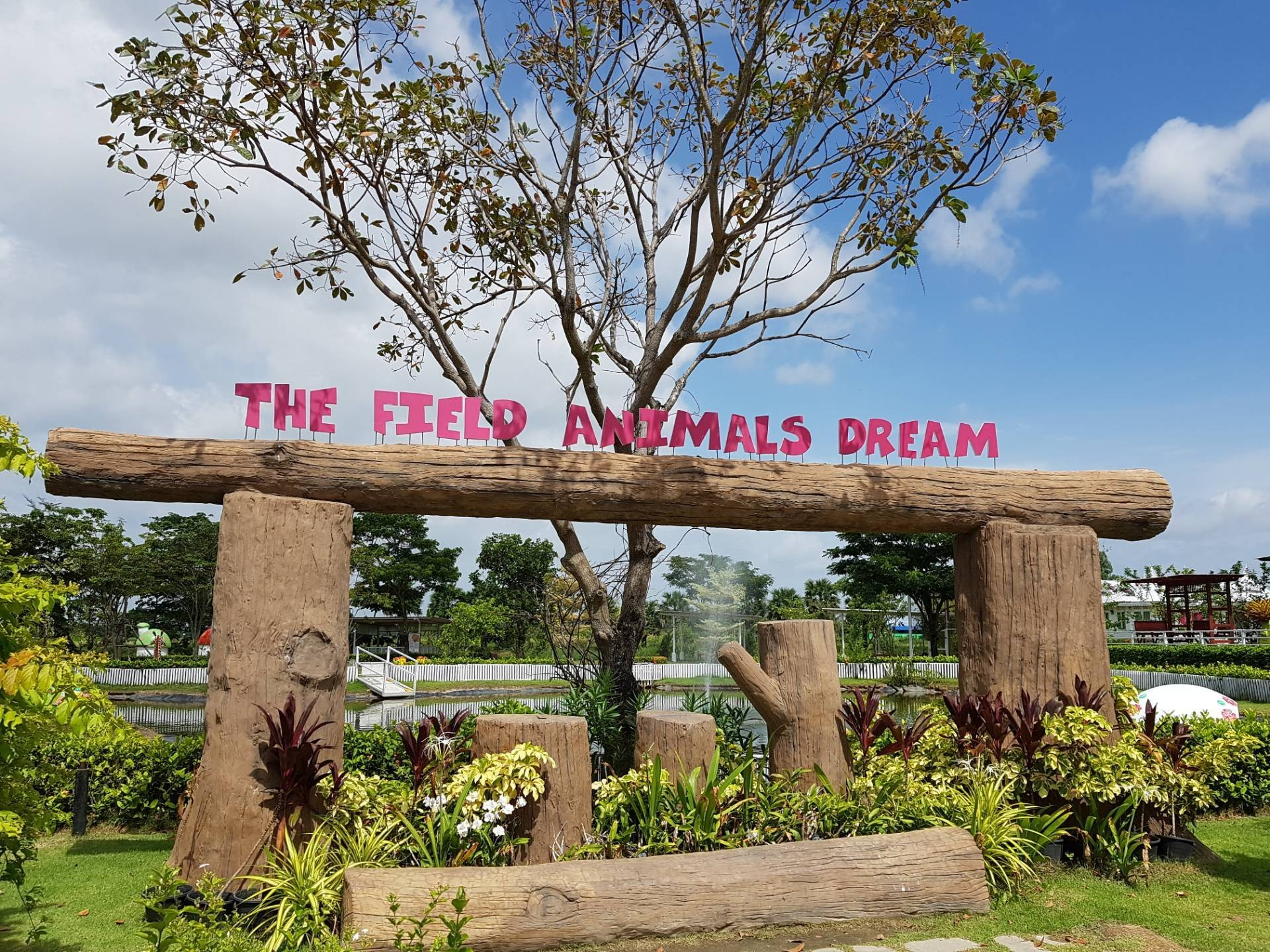 The Field Animals Dream