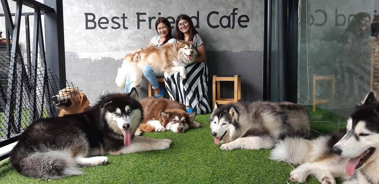 Best Friend Cafe @Korat