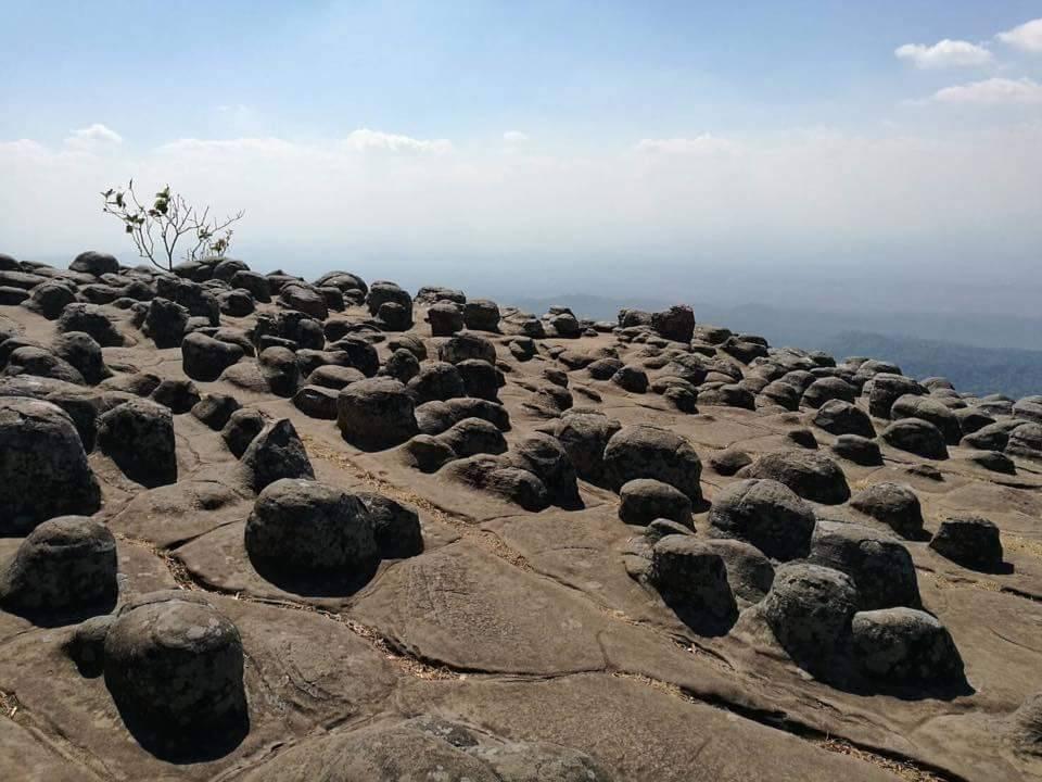 ลานหินปุ่ม
