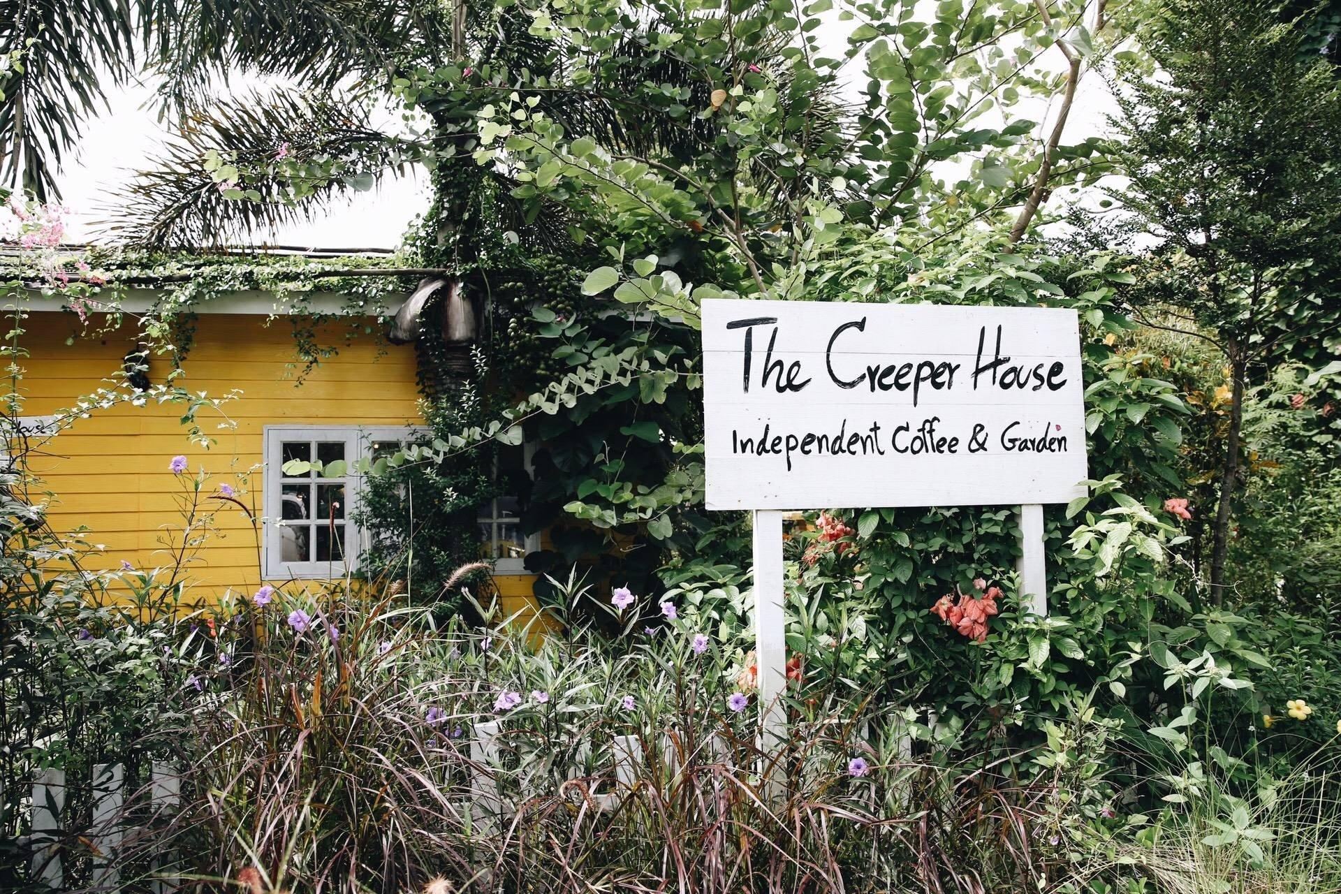 THE CREEPER HOUSE ( เดอะครีเปอร์เฮาส์ )