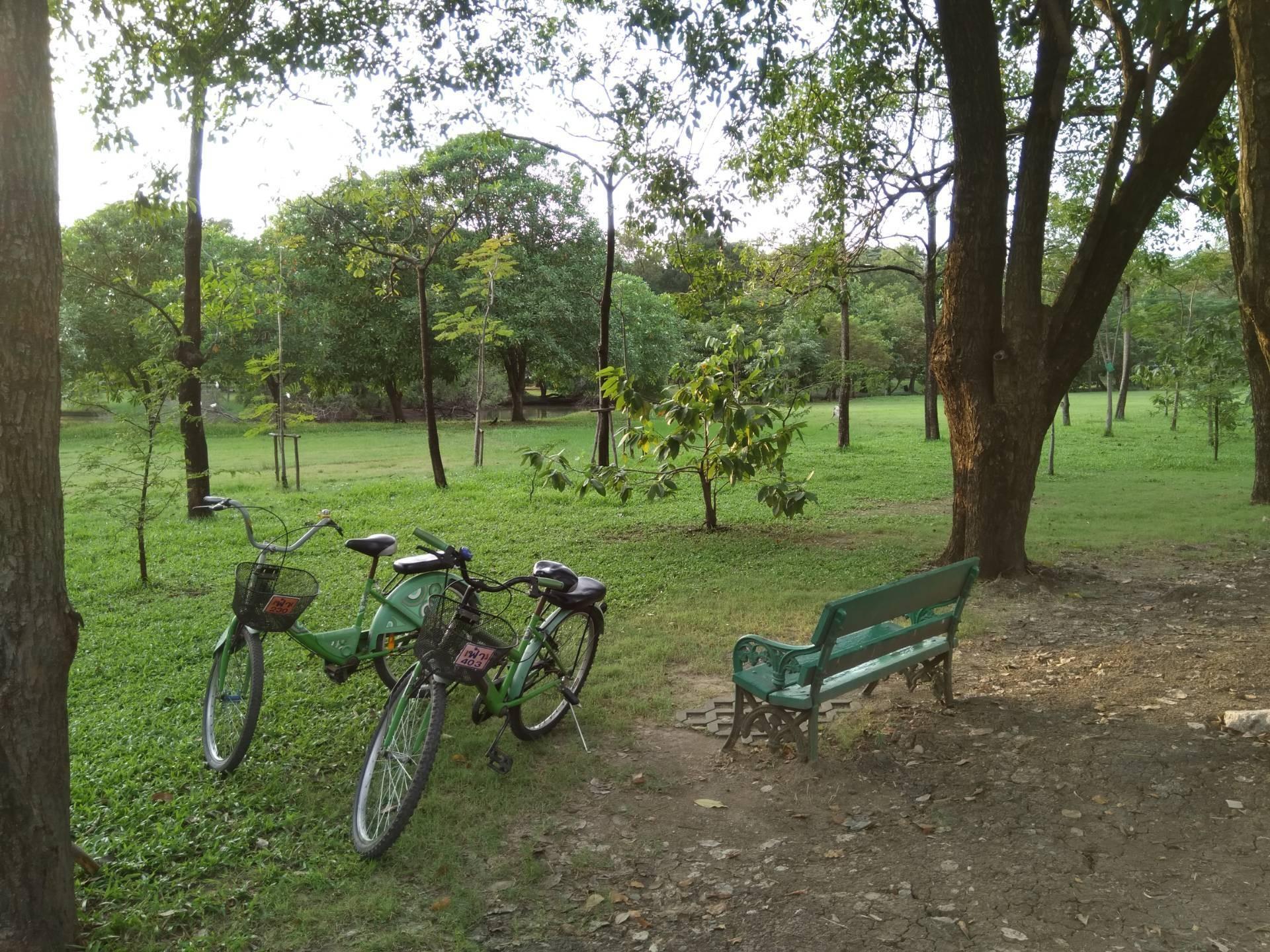 สวนวชิรเบญจทัศ (สวนรถไฟ)