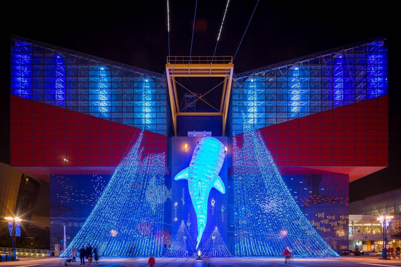 ภาพจาก  Festival of the Lights in Osaka Executive Committee