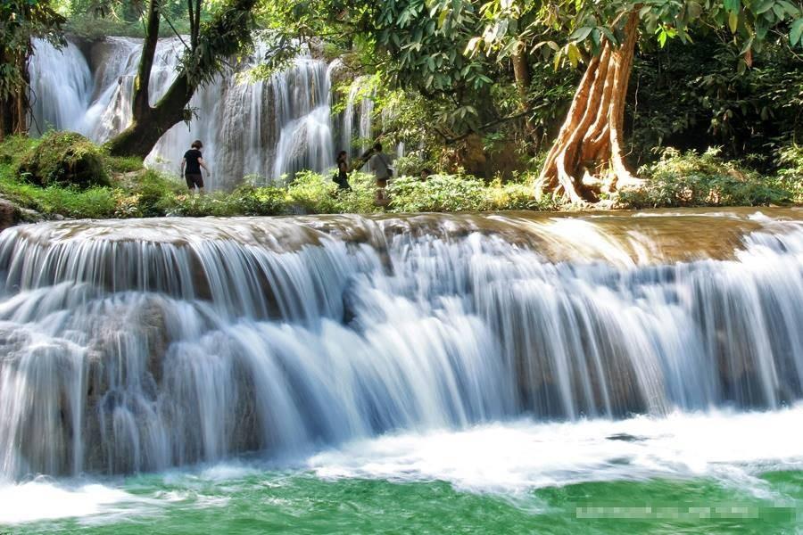 ขอขอบคุณรูปภาพจาก FB อุทยานแห่งชาติดอยภูนาง - Doi Phu Nang National Park