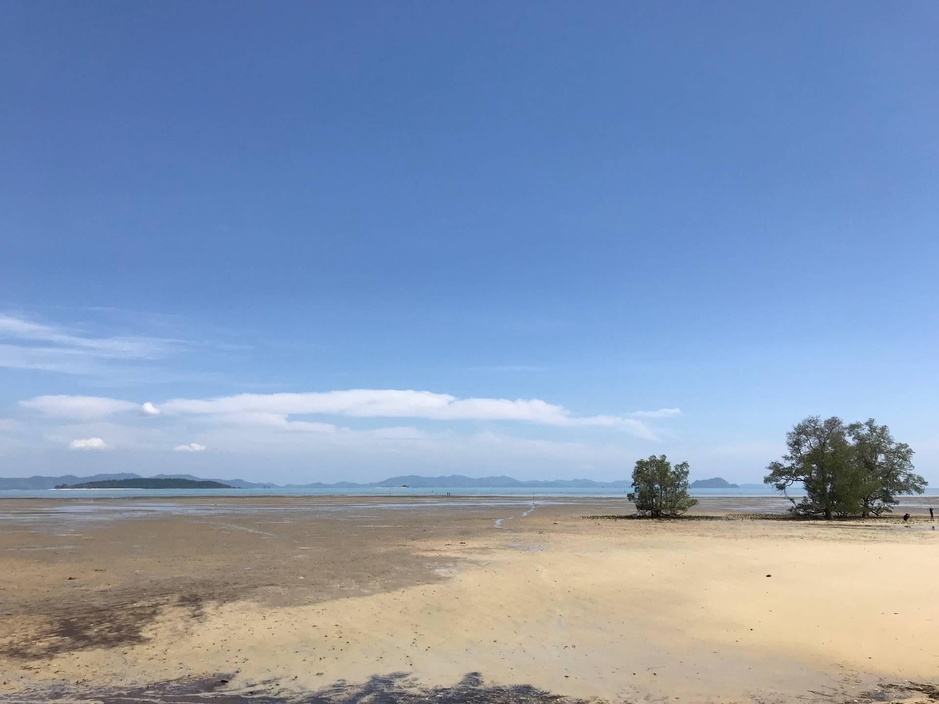 หาดท่าหลา