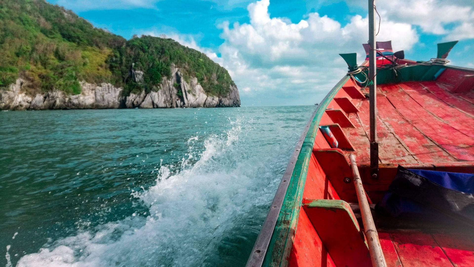 นั่งเรือไปชมโลมา