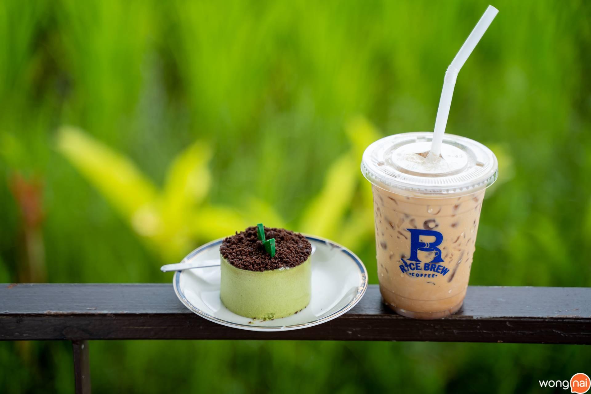 Rice Brew Coffee