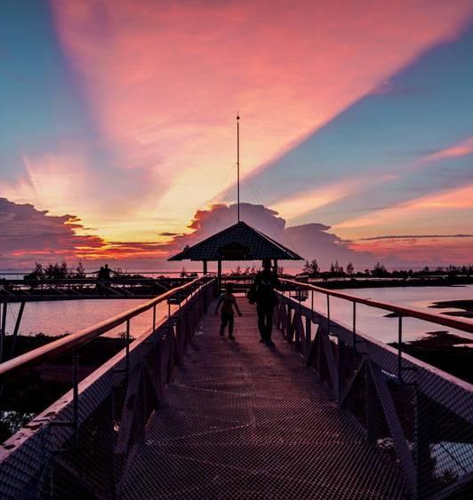 สกายวอร์ค ปัตตานี (Pattani Adventure Park)