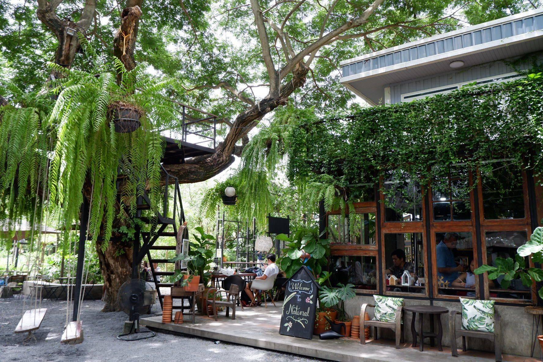 บ้าน ๑,๐๐๐ ไม้ Cafe & Farm