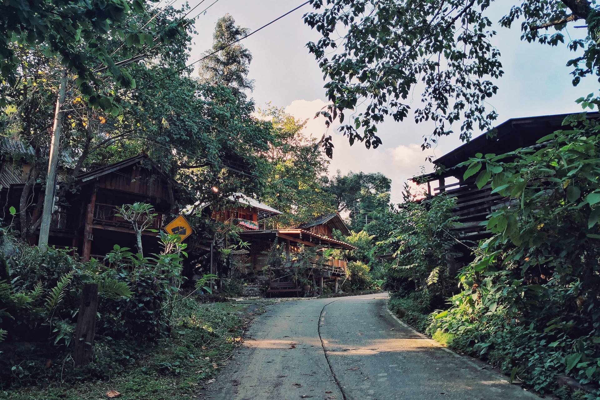 ชุมชนบ้านป่าเหมี้ยง