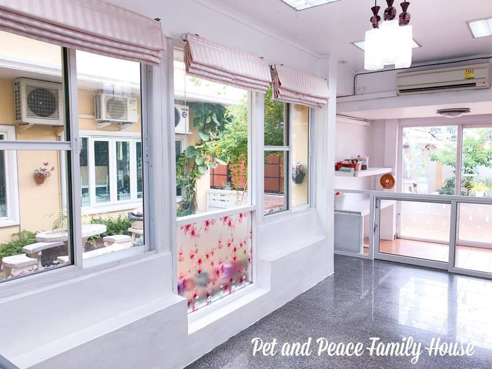 ขอขอบคุณรูปภาพจาก FB Pet and Peace Family House รับฝากสุนัข นอนแอร์ ไม่ขังกรง