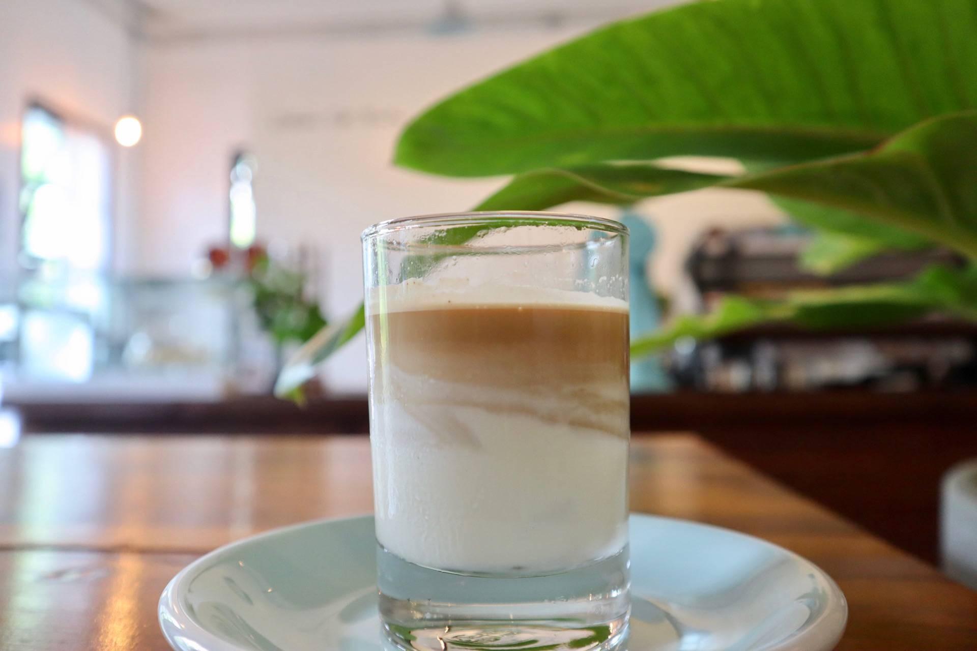 Cottontree Coffee Roasters