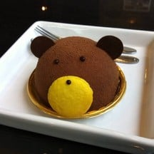 Teddy Chocolate Lava