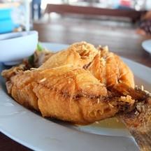 ราคา390฿ อร่อยเกินราคาา ปลาตัวใหญ่ 🦈🦈