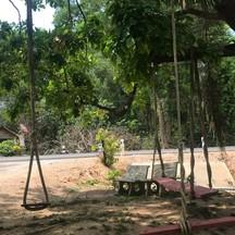 มีชิงช้าให้นั่งเล่นใต้ต้นไม้
